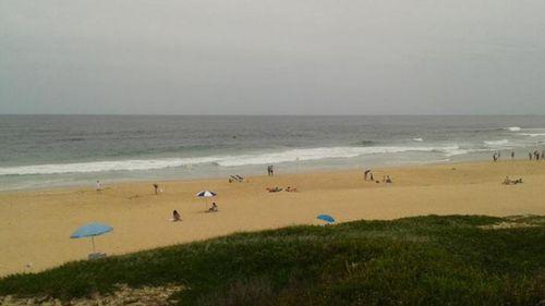 Shark keeps Newcastle beaches closed
