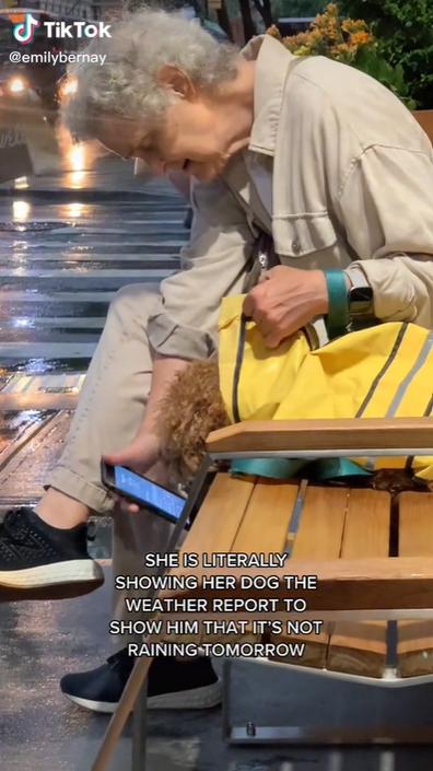 Elderly newyorker shows dog weather report.