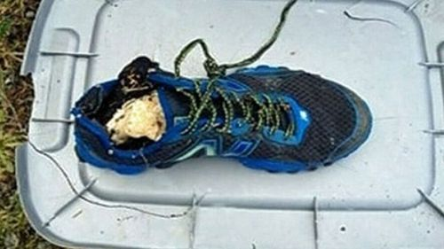 A shoe found last year with remains of a human foot that washed up on a remote Vancouver Island beach. (Photo: BC Coroner's Office).
