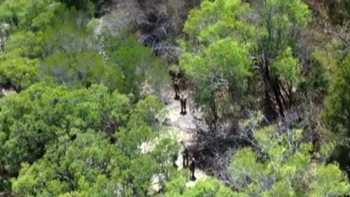 Searchers hunting for a Pakistani sailor who jumped ship during war games off the Northern Territory. (9NEWS)