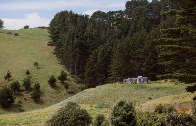 6. The LoveBus – Romantic escape nestled in nature – Raglan, Waikato