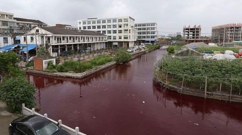 Chinese river mysteriously turns blood red overnight