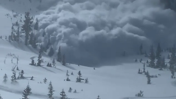 One of the snowmobiles filmed the avalanche as it rushed towards the group.