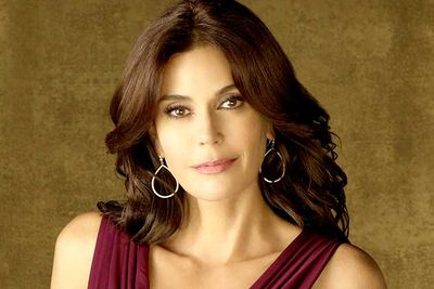Teri Hatcher as Susan Meyer