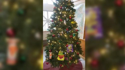 US police officers suspended after adding 'racist decorations' to Christmas tree