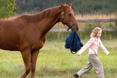 Ben and Cale Crane, Kurt Russell and Dakota Fanning, are father and daughter, and Soñador is the horse that brings them together. The actors became just as close as their characters, and after filming, Russell bought Fanning a real Palomino horse, Goldie.