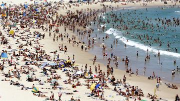 Pop up testing clinics will be established in Sydney's east to try and stop community transmissions in Bondi and other surrounding neighbourhoods.