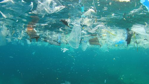 Up to 12.7 million tonnes of plastic waste is washed into the ocean each year, according to 2015 research.