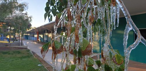 Students at Ross park Primary School were excited to find icicles forming on trees in the typically warm region.