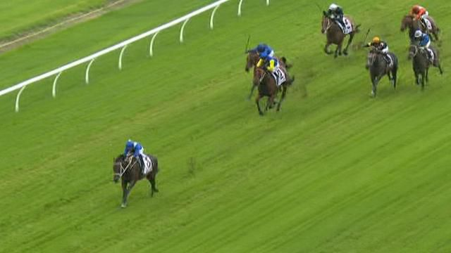 Wonder mare Winx makes it 16 in a row
