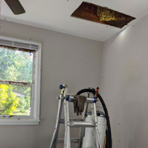 A ladder is placed below the ceiling to remove an infestation of bees.