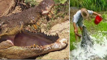 Confronting the crocodile that mauled the Barefoot Bushman
