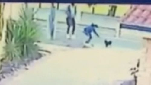 CCTV footage captured a man and woman coaxing Dahla down her driveway before she disappeared.