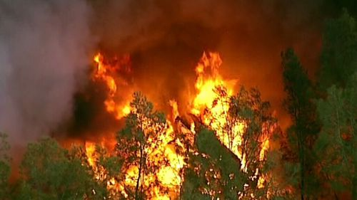 The fire broke out just before 4pm. (9NEWS)