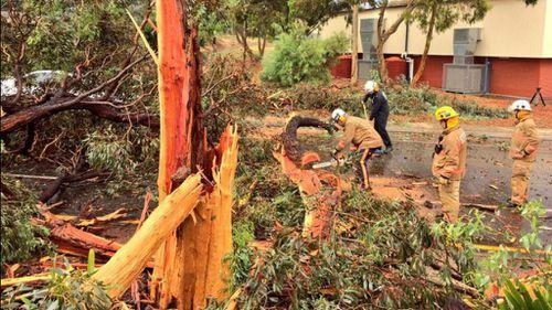 Emergency crews spent over an hour cleaning the debris. (Jack Berketa/9NEWS)