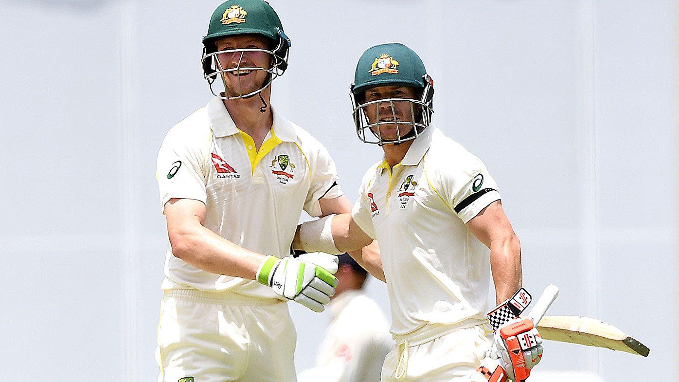 Ex-Australian coach Darren Lehmann nominates David Warner and Cameron Bancroft as Ashes openers