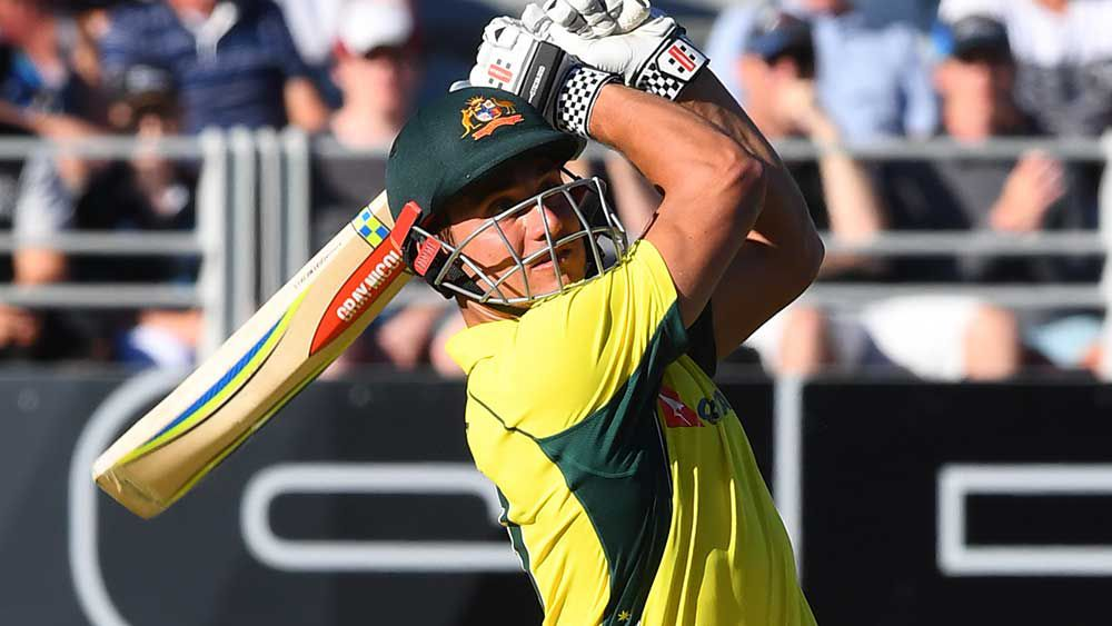 Marcus Stoinis' star rises in New Zealand