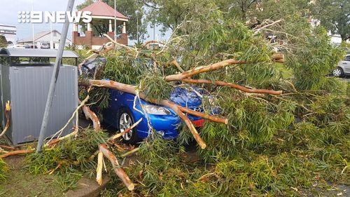 The SES received around 70 calls regarding storm damage.  (Delivered)