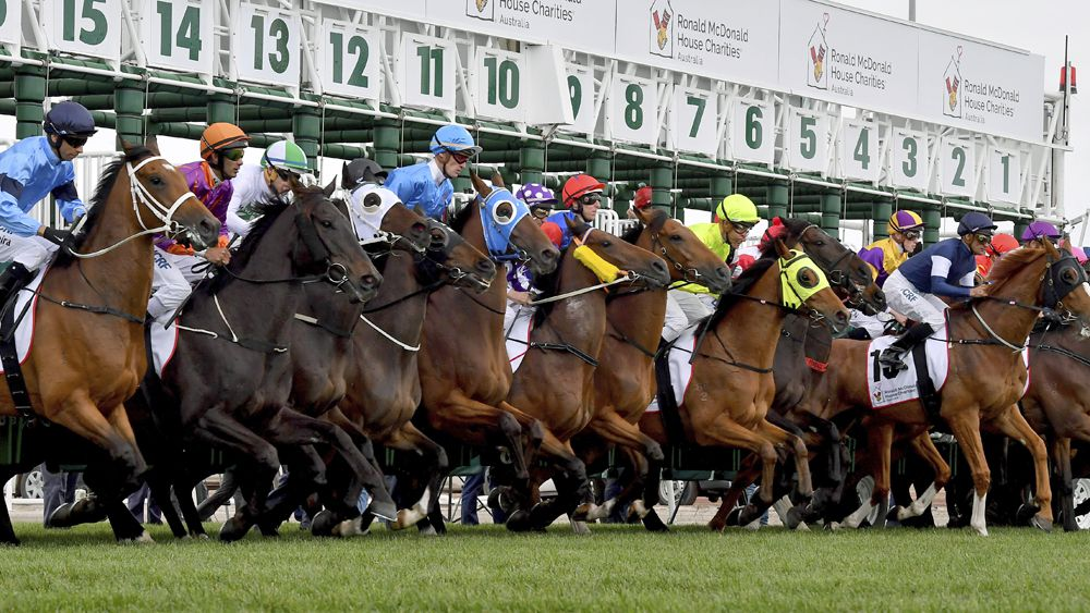 Image result for melbourne cup