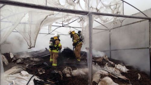 The cause of the blaze is still unknown. (9NEWS)
