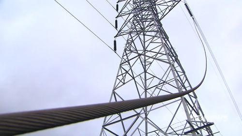 Sydney Plumpton fallen power line