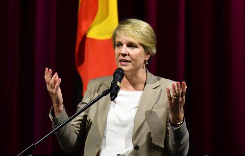 Deputy Labor leader Tanya Plibersek said more needed to be done.