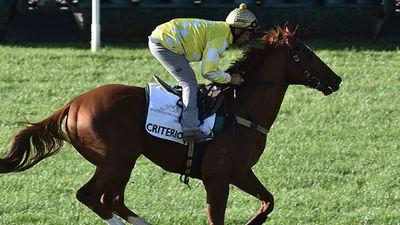 <p>Criterion (NZ)</p><p>Jockey Michael Walker</p><p>Trainers D Hayes & T Dabernig</p><p>Barrier 4</p>