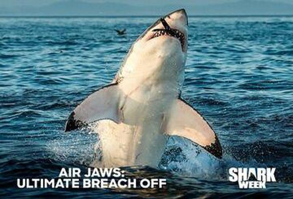 Air Jaws: Ultimate Breach Off
