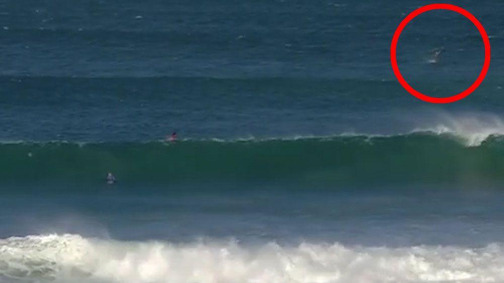 Wilkinson leads Aussie J-Bay surf assault