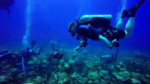 Scuba divers from Nekton spent hundreds of hours underwater off the coast of Bermuda.