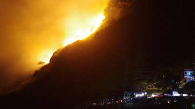 Fire has ripped through Burleigh Heads National Park on the Gold Coast overnight. (James Finn)