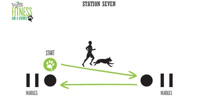 <strong>Station Seven: Shuffle/Sprint combo (4 minutes)</strong>