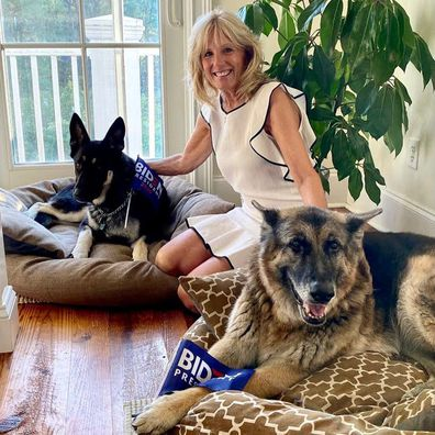 Jill Biden with 'first dogs' Champ and Major