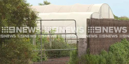 The man was fatally stung at the property in Dunkeld. (9NEWS)