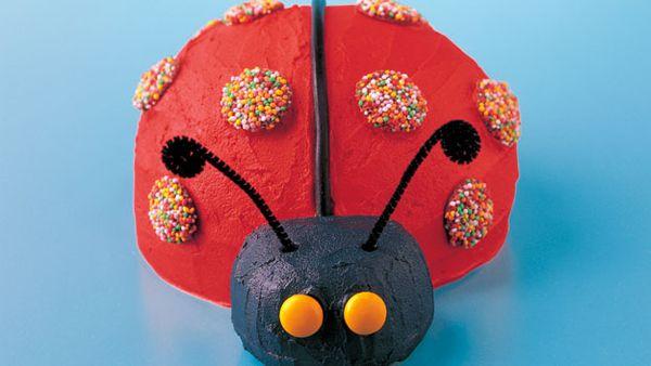 Lazy Ladybird Cake