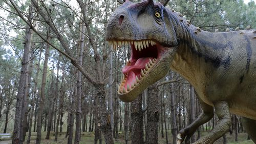 Dinsoaurs were a victim of their own success, new study suggests