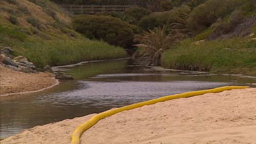 The sludge has been contained to a creek and authorities are confident little or none of it has seeped into the popular swimming spot.