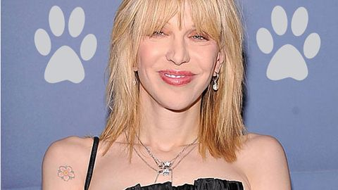 Courtney Love: 'A mountain lion killed my daughter's cat'