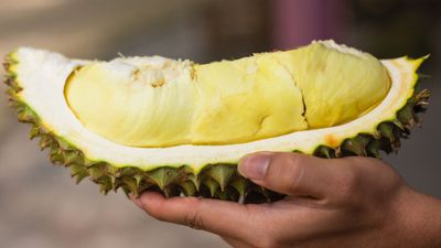 10. Durian - Many people like the taste of this tropical fruit, however it's smell is one of the worst things on earth and is banned on public transport in Singapore.