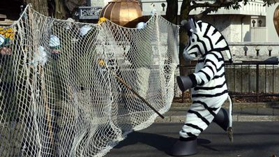 A man dressed as a 'zebra' during a drill at Tokyo's Tama Zoo in February, 2013.