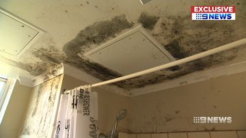Families in a Sydney public housing building are being made sick from a mould infestation in their homes.