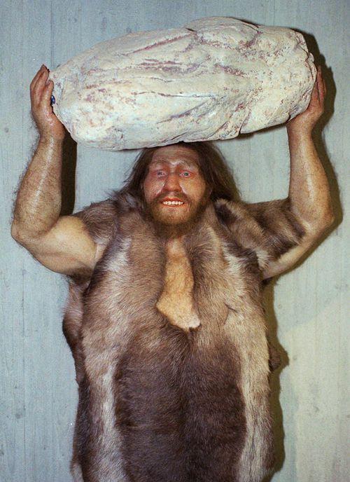 A replica of a Neanderthal man