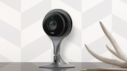 The Nest Cam Indoor is the product which had the glitch.