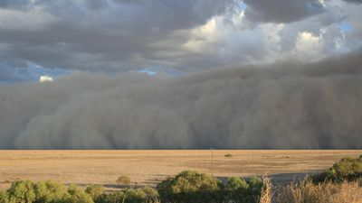 Bedourie means 'dust storm' in the local Indigenous language. (Supplied, Maggie den Ronden)