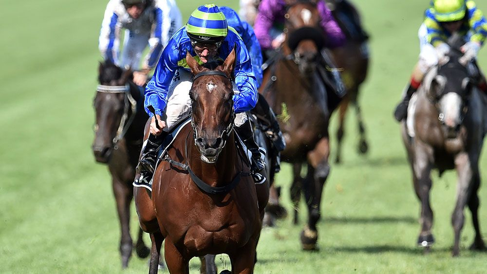 Jameka's Melbourne Cup hopes have come under question. (AAP)
