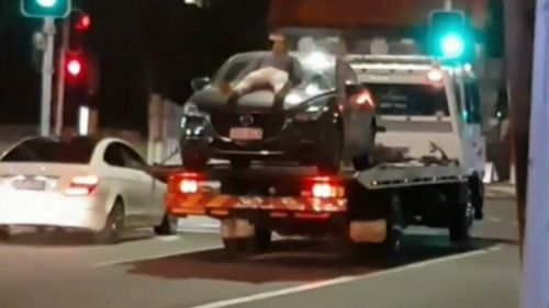 Mr Puerta rode the moving car for about 700 metres. (9NEWS)