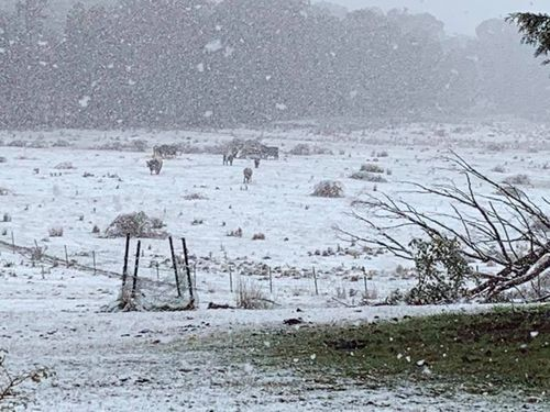 190529 Australia snow forecast weather Bathurst NSW news today