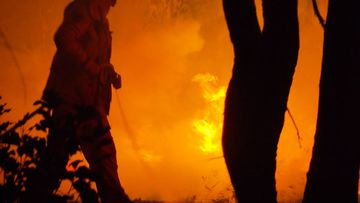 Firefighters are battling 70 fires across NSW.