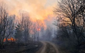 Chernobyl fires: Radiation fears as firefighters struggle to contain blazes in radioctive zone