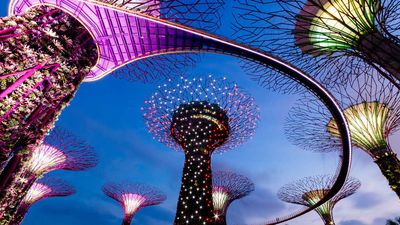 $100 helpline: Three amazing Singapore experiences under $100